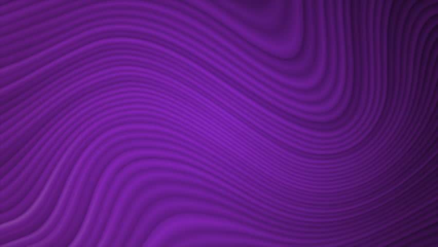 Background with animated color lines. | Shutterstock HD Video #1013393915