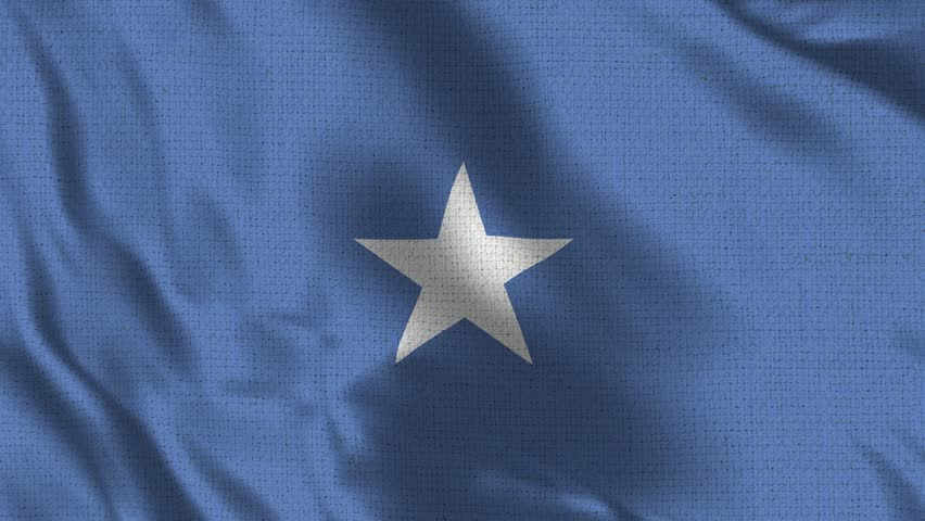 Somalia Flag Loop - Realistic 4K - 60 fps flag of the Somalia waving in the wind. Seamless loop with highly detailed fabric texture. Loop ready in 4k resolution