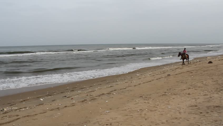 Chennai India July 15 2018 handheld unedited footage of man riding horse near seashore at marina beach with unidentified people having leisure time with sea breeze,watching the beauty of dancing waves | Shutterstock HD Video #1013891165