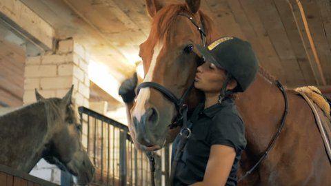 Woman talks to her horse, close up. An athlete talks to a horse in a stable before competition.