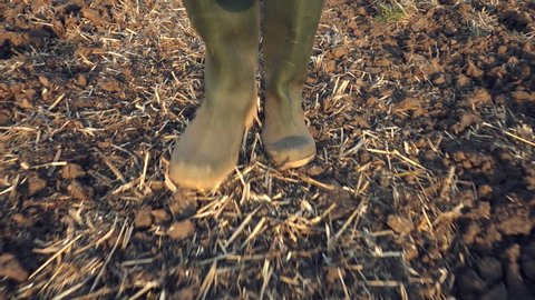 Farmer wearing rubber wellington boots walking in stubble field in sunset