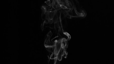 White Smoke Intricate Meanders. White clearly expressed smoke slowly rises from the bottom of the screen and forms elegant twists on a black background. Filmed at a speed of 120fps