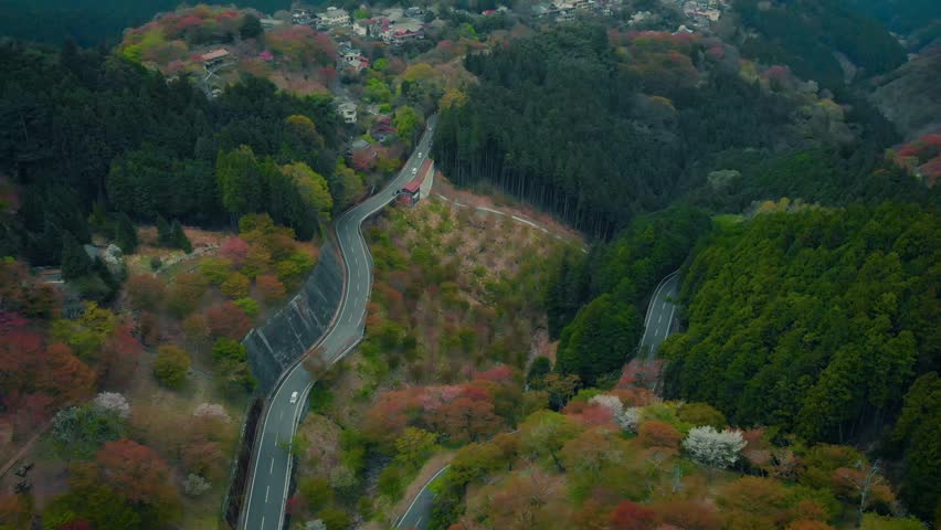 Cinematic aerial footage of cherry blossoms at Mount Yoshino, Nara Prefecture, Japan.