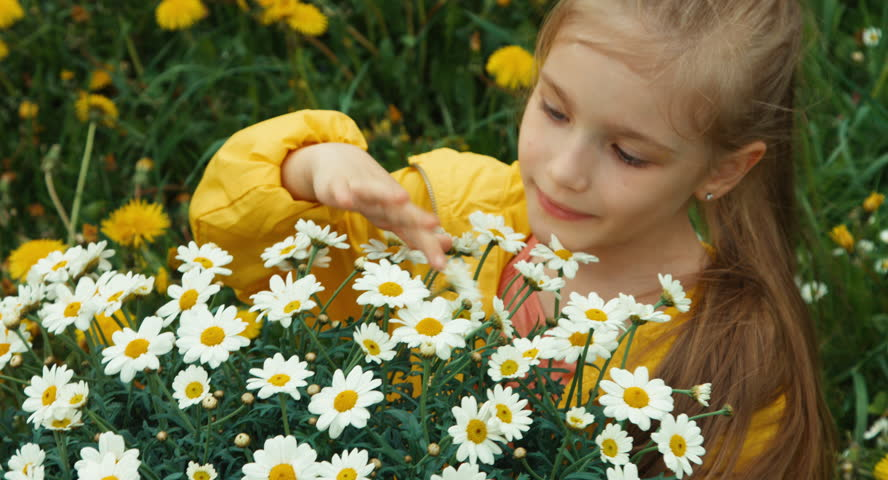 Looking For Alaska Flower: Happy Child Running Through A Meadow Of Yellow Flowers