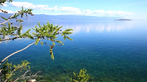 Lake Baikal in a summer sunny day. Blue waters of the strait Small Sea (Maloye More) and a green branch of the larch. Natural background