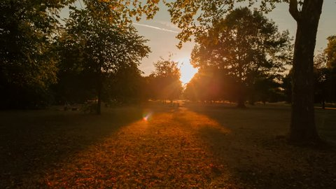 Wide angle shot of a beautiful sunset in Hyde Park, London, UK. The park was established by Henry VIII in 1536
