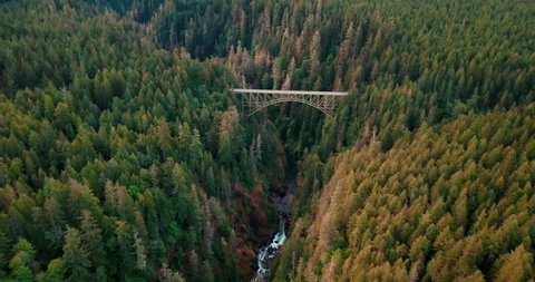 High Flying 4K Aerial Above An Abandoned Railway Bridge In The Forest of the PNW
