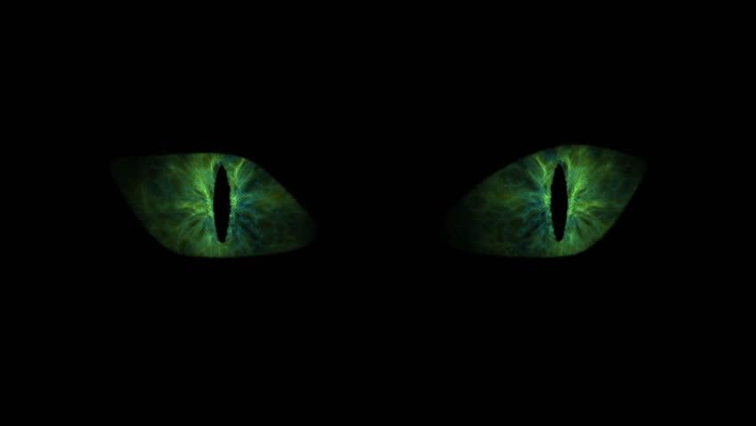 Green cat eyes blinking loop. Animation of green cat eyes blinking. Seamless loop.