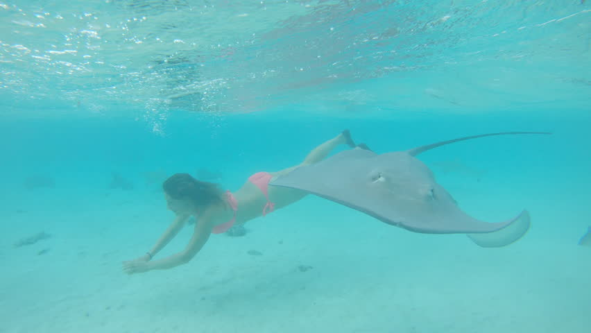 Underwater, Slow Motion: Young Woman Stock Footage Video (100%  Royalty-free) 1015909075   Shutterstock