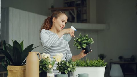 Cheerful housewife is watering green plants using sprayer holding flowerpots and smiling standing in beautiful light apartment. Housework and botany concept.