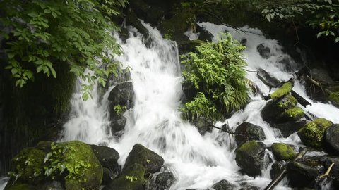 White cascade falling among stones with green plants in Kagoshima