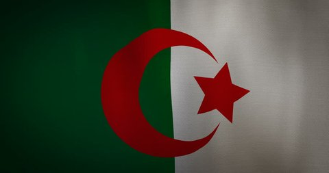animation - modern Algeria flag fabric texture waving in the wind. 4K motion flag footage video