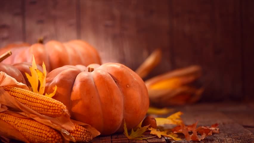 Thanksgiving Day. Pumpkin, Squash. Happy Thanksgiving Day wooden Table Background decorated with pumpkins, corn comb, candles and autumn leaves garland. Holiday Autumn festival scene, Fall, Harvest 4K   Shutterstock HD Video #1016657905
