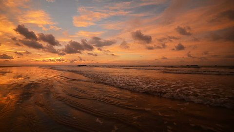 Sunset reflected on wet beach sand with incoming ocean waves and seagulls. A beached foreground log adds interest. Seamless loop. Shot at 1080p.
