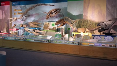 JACKSON, MISSISSIPPI / USA - JULY 2018: The MDWFP Museum of Natural Science in Jackson, Mississippi, USAS. People, families, kids near dinosaurs display