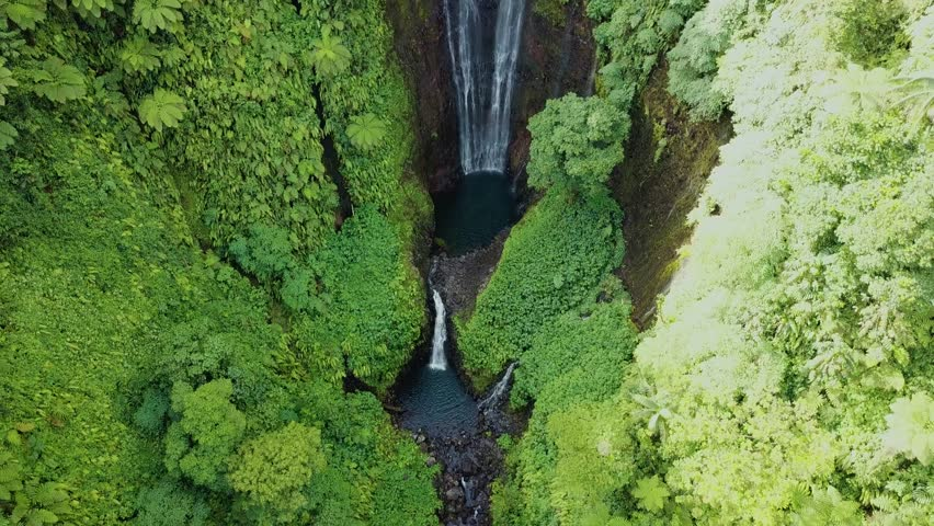 This is an impressive shot which pans up to reveal an immense single drop waterfall on an island in Samoa, Pacific Ocean. Shot on a drone. 4K | Shutterstock HD Video #1017427435