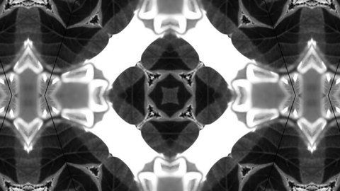 Abstract black and white kaleidoscope