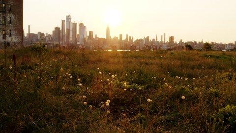 Empty Field and New York City Skyline 4k