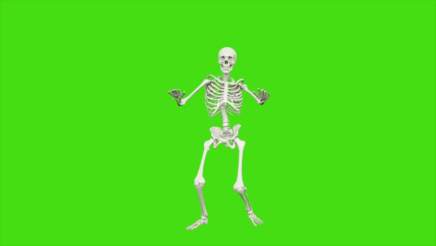 Skeleton dancing. Seamless loop animation on green screen.