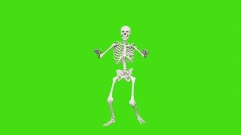 Skeleton dancing. Seamless loop animation on green screen.