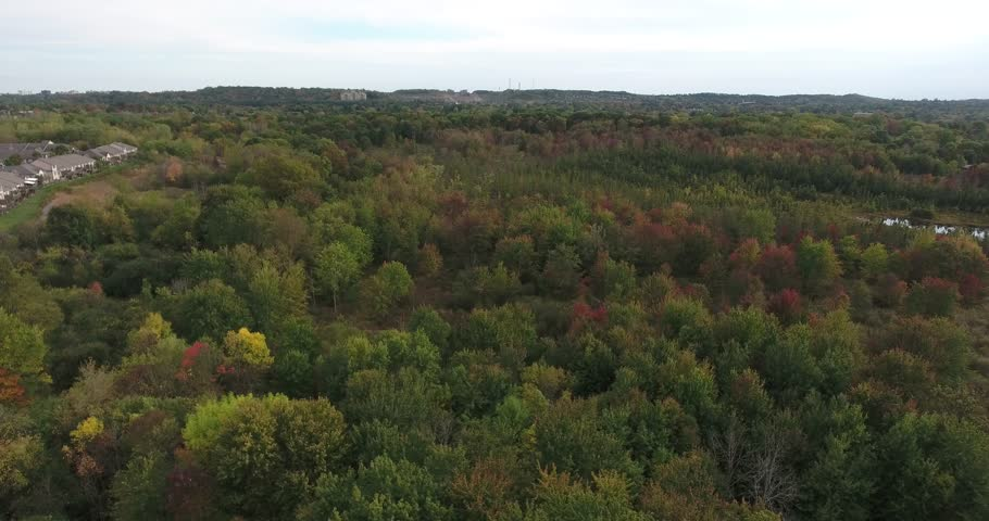 Autumn Forest Low Level Flying   Shutterstock HD Video #1018436365