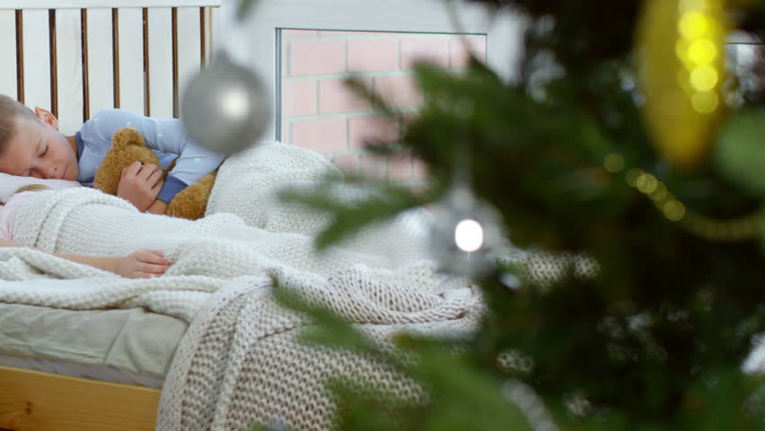 Cute brother and sister of primary school age sleeping soundly in bed on Christmas morning, boy hugging teddy bear | Shutterstock HD Video #1018631215