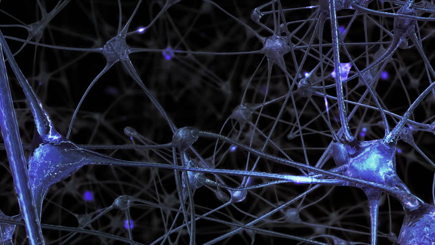 Journey through a network of neuronal cells and synapses in the brain through which electrical impulses and discharges pass | Shutterstock HD Video #1019086825