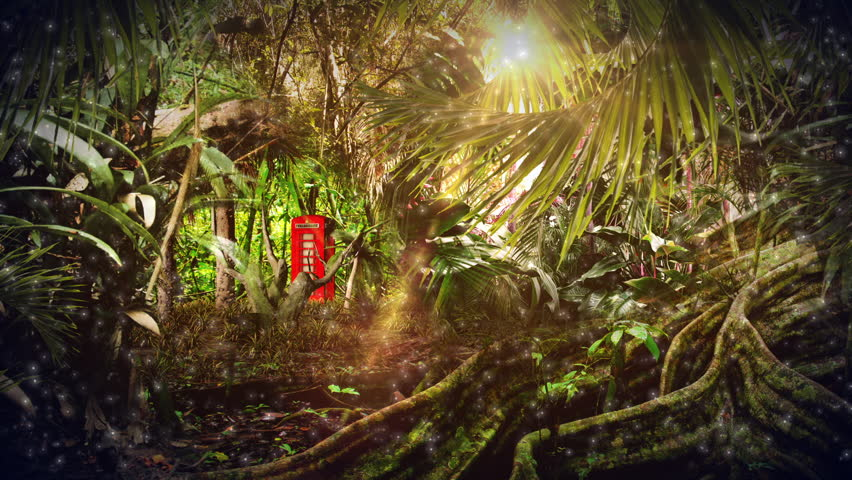Magical Jungle Scene With Tropical Stock Footage Video