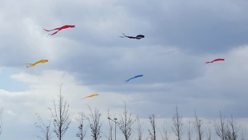 Multi-colored Kites in Sky  | Shutterstock HD Video #1019449975