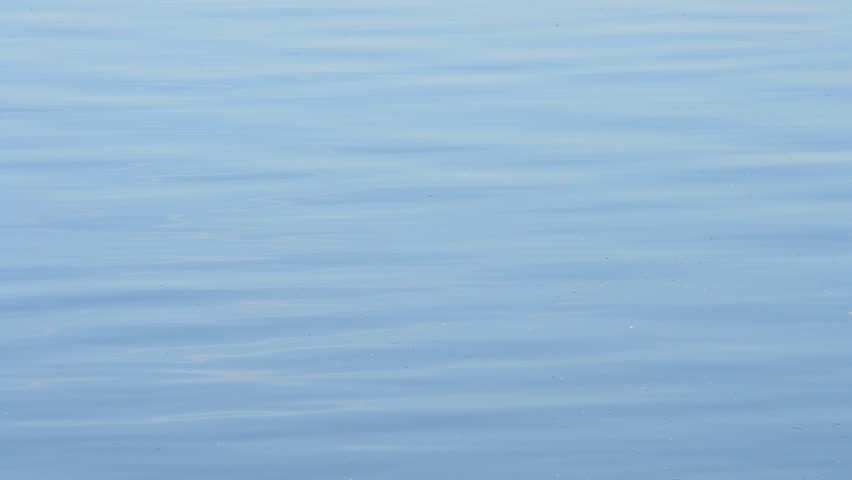 calm blue water. Modren Calm Stock Video Of Natural Calm Blue Water Surface Covered  10195625  Shutterstock With Calm Blue Water