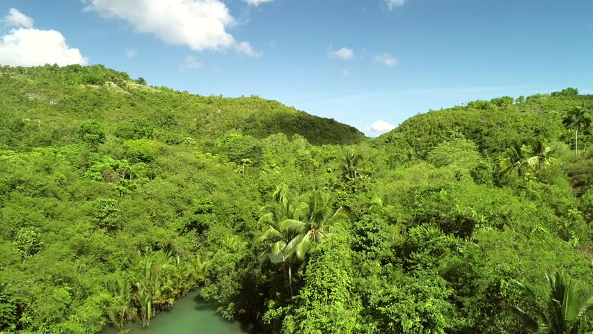 Aerial view of Bojo River towards the Tañon Strait, Aloguinsan, Philippines. | Shutterstock HD Video #1019644555