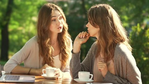 Young beautiful serious women using laptop computer and have discussion while sitting in park