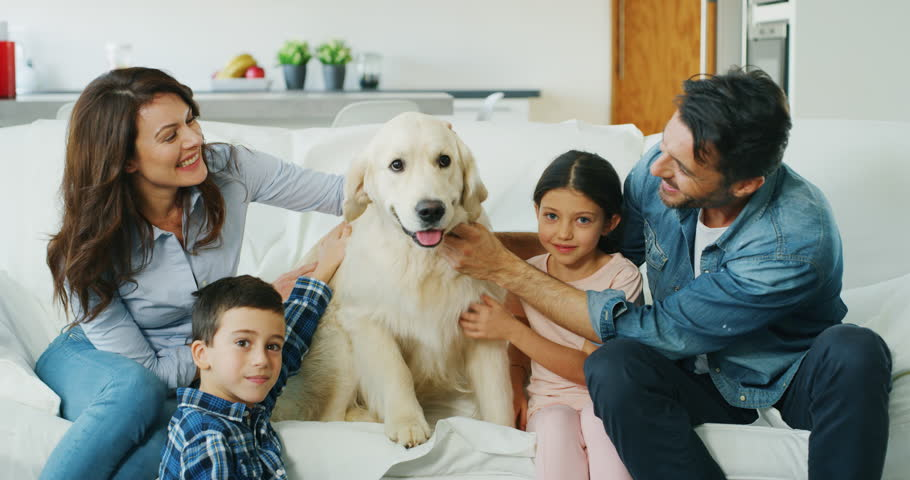 Portrait of happy family with a dog having fun together in living room in slow motion. Shot with RED camera in 8K. Concept of happy family, | Shutterstock HD Video #1020812455