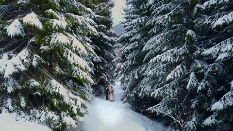 Aerial view of young wedding couple walking and having fun holding hands in snow weather pine forest during snowfall. Snowy engagement ceremony. Winter wedding fairy tale inspiration.