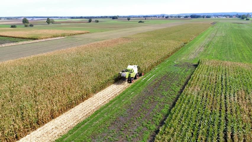 Karlshuld, Bavaria / Germany - 09 10 2018: Karlshuld, Germany - September 11th: Corn is being harvested by big combine harvester at noon