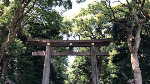 TOKYO, JAPAN - August 4, 2018 : Travellers walk through torii shrine gate at Meiji Jingu Shrine temple.