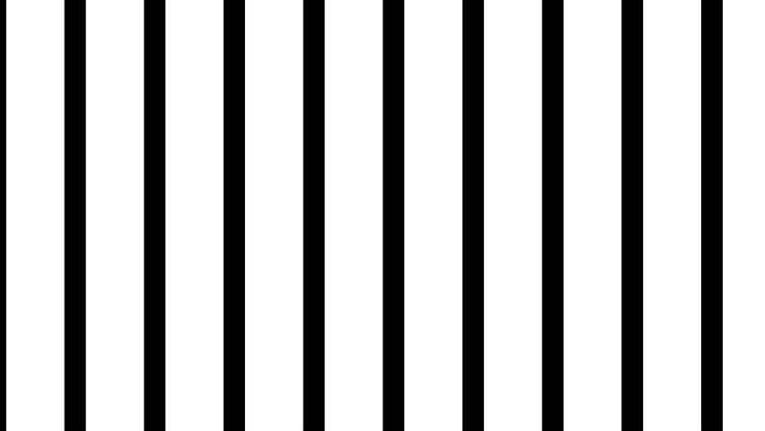 Vertical venetian blind transition animation | Shutterstock HD Video #1022078365