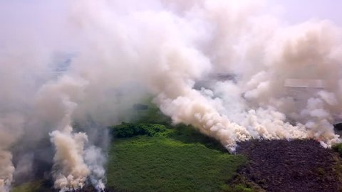 Aerial view smoke of wildfire
