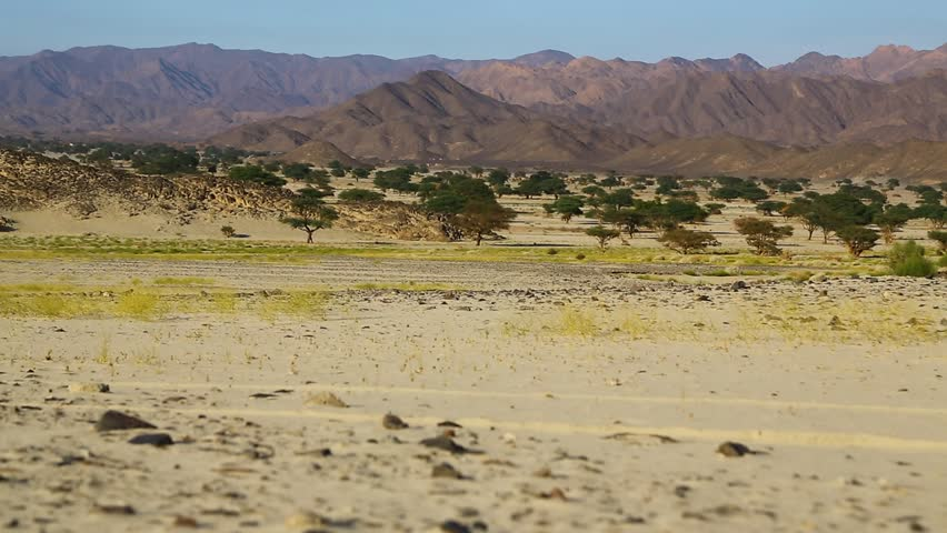 In the middle of the desert rock and track like concept of wild and nature scenic land   | Shutterstock HD Video #1022804935