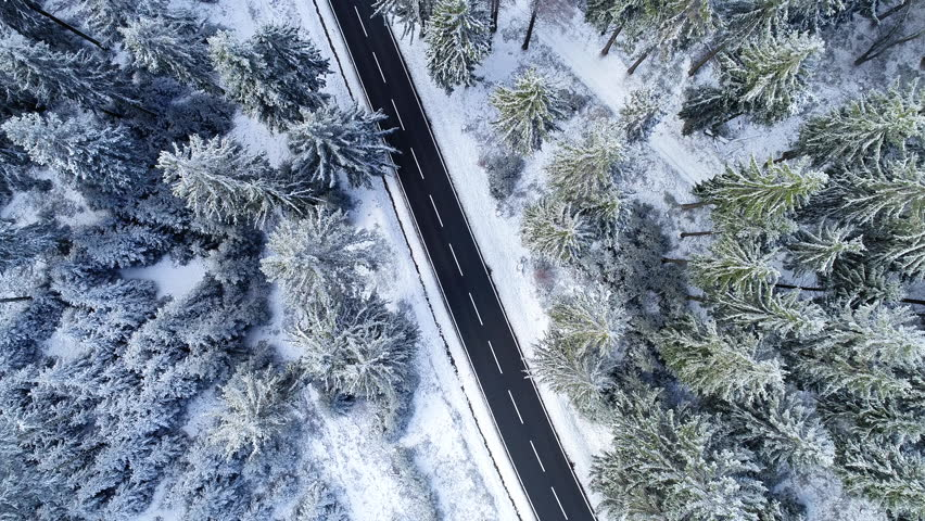 Road through the wintery forest - aerial view | Shutterstock HD Video #1022812945