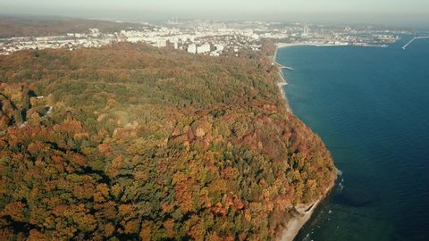 Aerial view of panorama forest near the baltic sea with city of Gdynia in the background