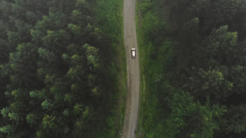 Forest Road With Car. Vehicle Riding In Woodland Aerial View. Road With Transport Between Foggy Green Trees | Shutterstock HD Video #1022883565