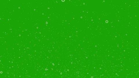 Bubbles floating on green screen. 4k