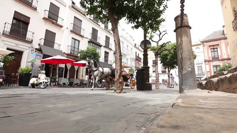 Street view while tumbrel crossing/Sevilla-Spain 26.06.2012