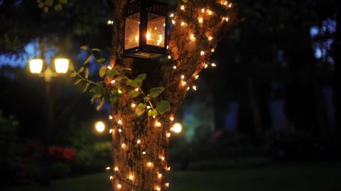 Vertical Panorama - Wonderful B-roll or Background Video of a Decorated Tree with Garland and Lanterns in Night in the Garden or Park (2 shot in 1)