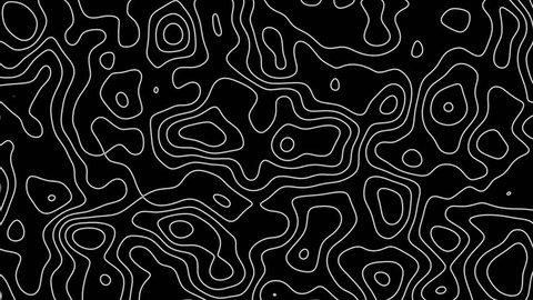 Seamless loop fractal lines background. Topographic map like abstract backdrop