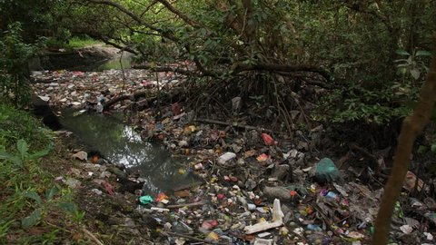 Environmental Pollution Ecological Problem Concept. Huge Dump in Tropical Mangrove Tree Forest. Plastic Waste Rubbish Floating in Lake Water. 4K. Bali, Indonesia.