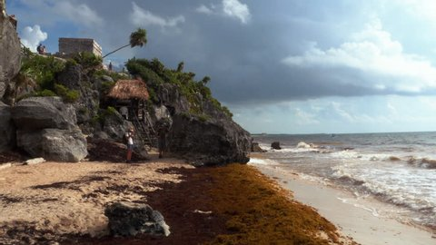 Tulum, QUintana Roo / Mexico - August 20: Mayan ruins of Tulum seen from the beach full of sargasso algae