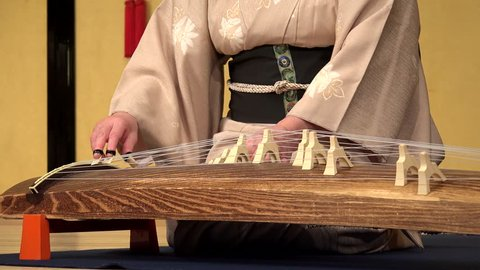 Japanese woman playing the koto harp  gion, kyoto, japan
