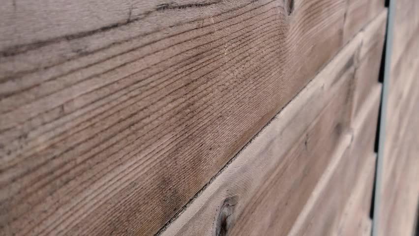 Slow motion view of old wooden door. | Shutterstock HD Video #1024238075